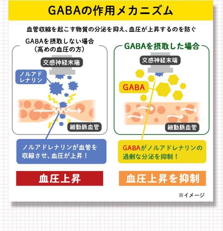GABAの作用メカニズム イメージ